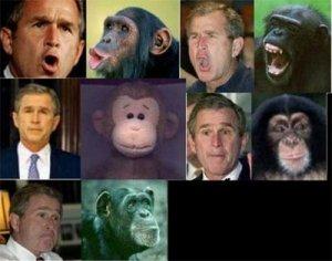 Hitlers Nachfolger: Georg Bush und die Vorbereitungen für den Irak Krieg
