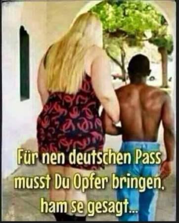 Ausschwärmen auf Deutsche Frauen, oder man stellt Prostiuierte zur Verfügung, aus Verbrecher Clans, wie es die Albaner vor allem machen