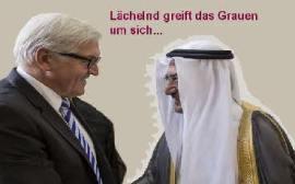 Terroristen als Partner: Steinmeier